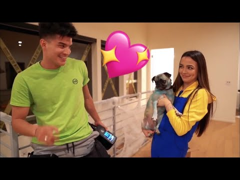 Alex wassabi and Vanessa Merrell being the cutest fake couple for 20 minutes