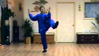 complete northern wu style 37 taiji form