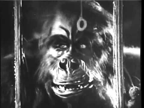 The Ape (1940) -  Clip