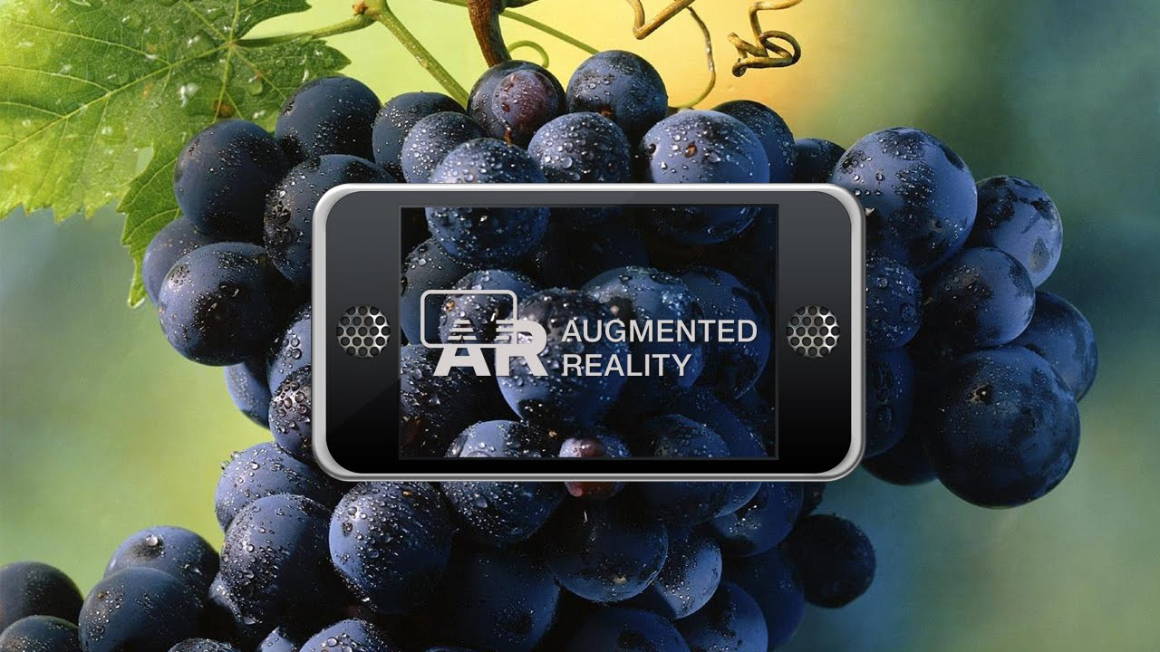 augmented reality wine