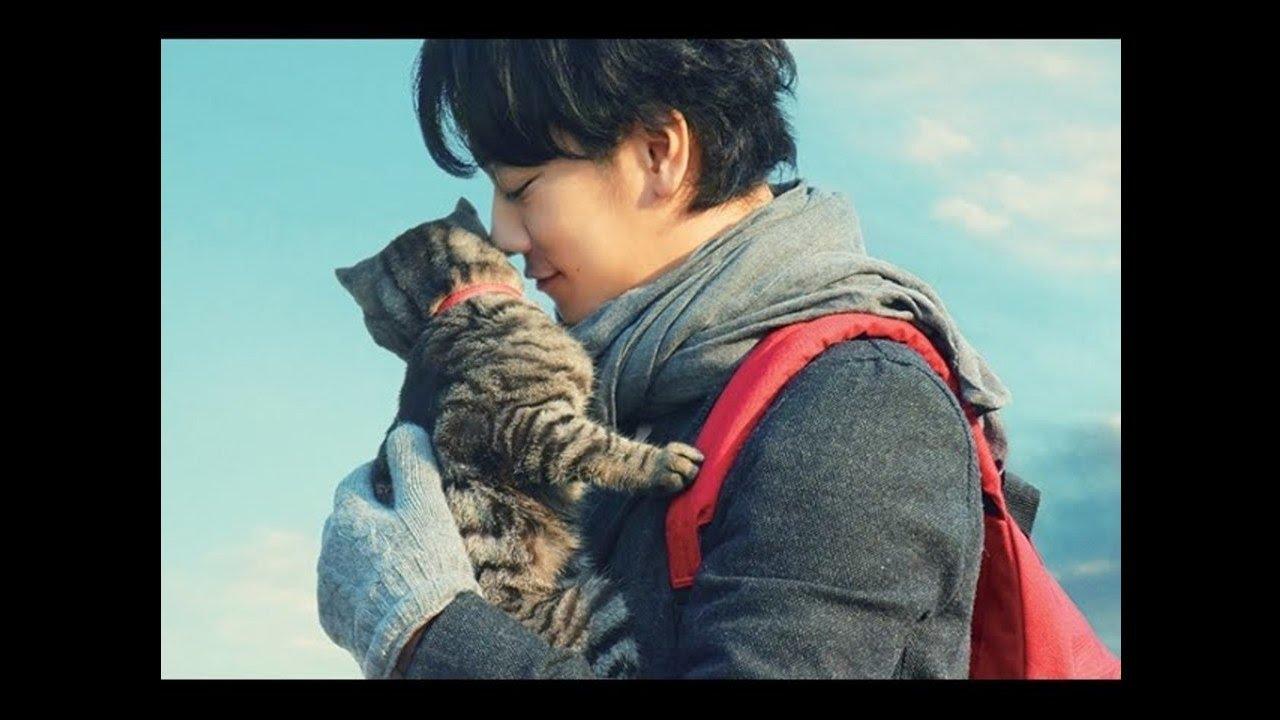 Flag 【世界から猫が消えたなら OST】