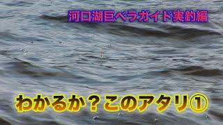 棚網久 河口湖巨ベラガイド実釣編 Giant Japanese crucian carp fishing guide in Lake Kawaguchi わかるか このアタリ①