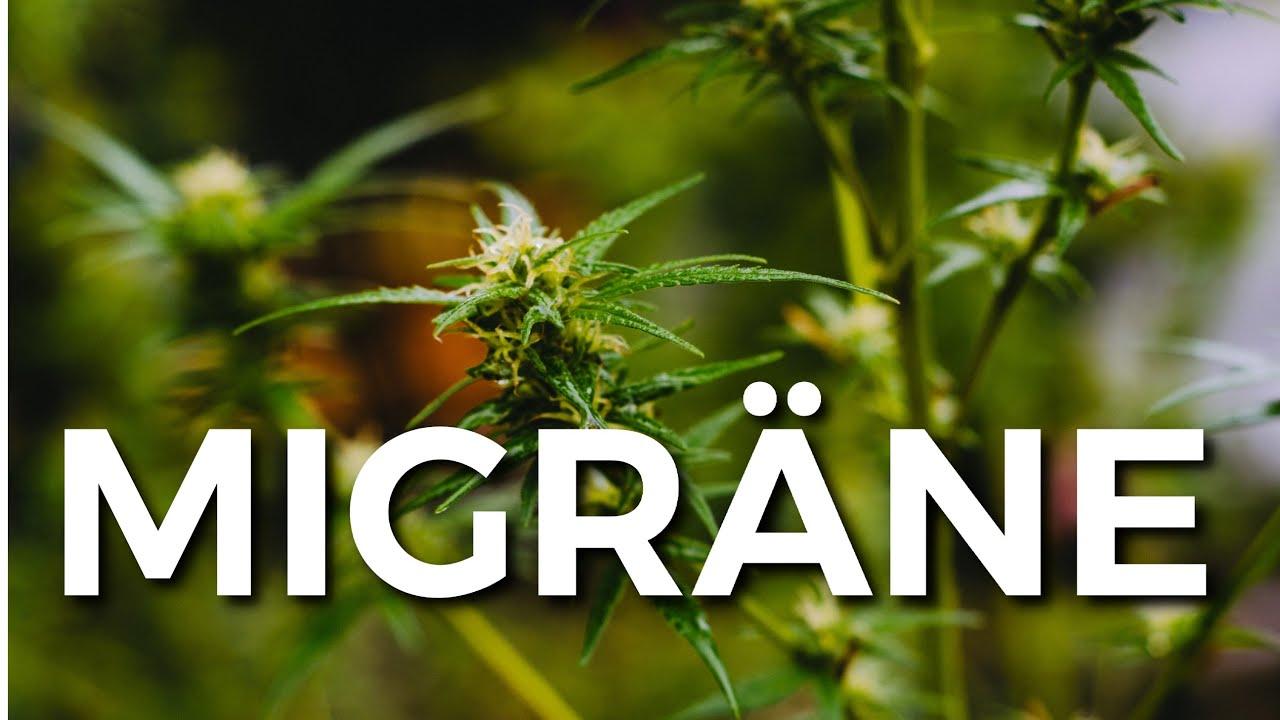 🧐 Ein Joint bei Migräne? Warum denn nicht???