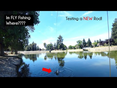 Ellis Lake In Marysville California - First Time With Risen Rod - McFly Angler Episode 69