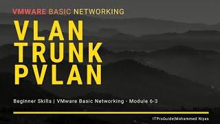 VMware Basic Networking Distributed Switch | VLAN, TRUNK, PVLAN Module 6-3