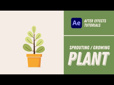 Sprouting/Growing Plant Animation - After Effects Tutorial #23