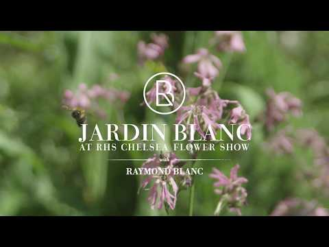 Jardin Blanc at the RHS Chelsea Flower Show 2018