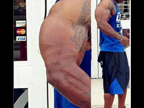 These Gains Are Absolutely Adobe Photoshop 2.0 !