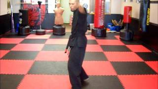 Northern Tigers - Kempo Form
