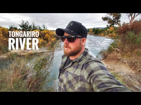 Fly Fishing World Class Trout River!
