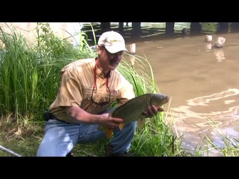 Tips On Fishing The Connecticut River For Walleye - 2012 from YouTube · High Definition · Duration:  4 minutes 58 seconds  · 13,000+ views · uploaded on 7/8/2012 · uploaded by Dylan-Bobby IceAdventures