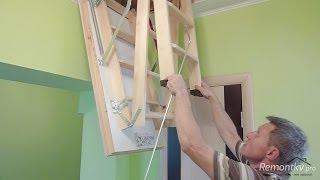 видео люки на чердак с лестницей