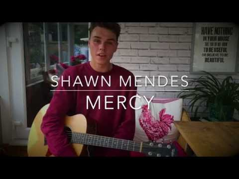 Shawn Mendes - Mercy  - Cover (Lyrics and...