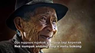 Story wa nasihat orang tua