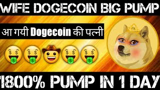 Big Profit Coin Launch | Wife Dogecoin Future | Cryptocurrency News Today