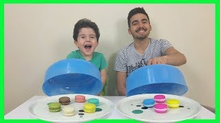 Real Food vs Squishy Food Challenge | Gerçek vs Pofuduk Yemek | Learn Colors with Macaron