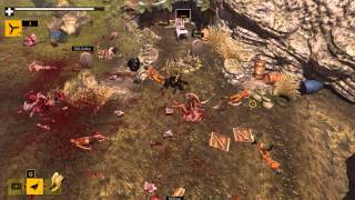 How to Survive Game - Kovac