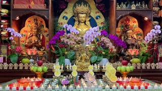 སྒྲོལ་མ་ཉེར་གཅིག་གི་བསྟོད་པ།二十一度母禮贊文Twenty One Tara Praise Двадцать один Hai Mươi Lần Tara Ca Ngợi