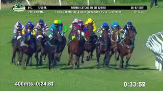 Vidéo de la course PMU PREMIO CATCHO EN DIE 2016