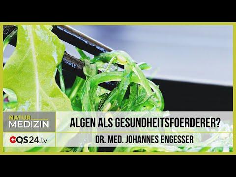 Algen als Gesundheitsförderer?   Dr. med. Engesser   Naturmedizin   QS24 17.03.2020