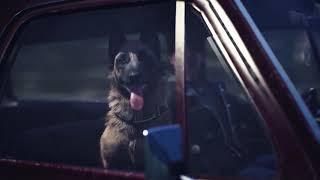 Blair Witch - Laขnch Trailer