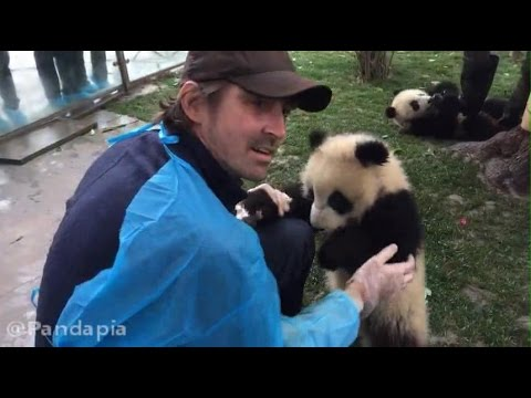 20170221 Lee Pace with Pandas 04 Go out for a walk!