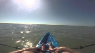 Kayaking in Sanibel with Gentle James of the Glens