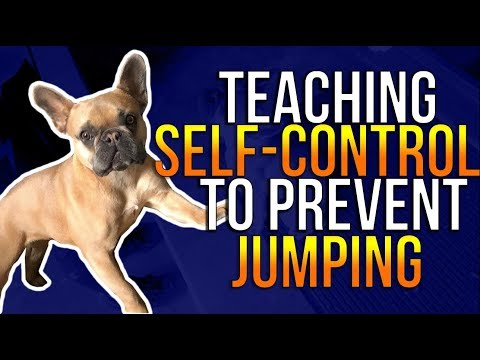TEACHING SELF-CONTROL TO PREVENT JUMPING
