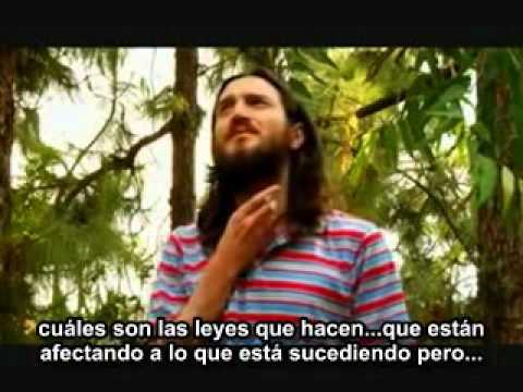 John Frusciante - Entrevista en español (The Heart is a Drum Machine, 2008) - Parte 3