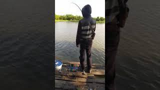 ДУМАЛ ОГРОМНЫЙ КАРАСЬ ПРЁТ УДОЧКУ КАРП на ПОПЛАВОК Рыбалка 2021 Shorts
