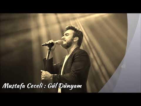 Mustafa Ceceli Gül Dünyam