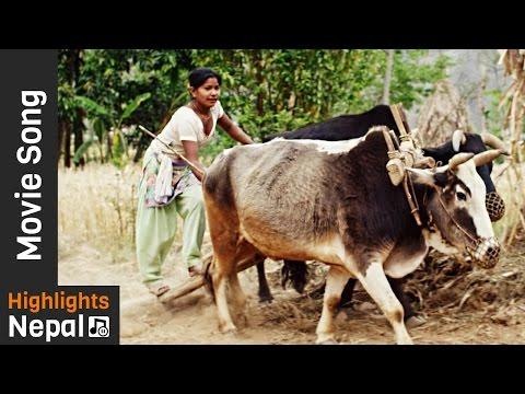 Bajo Jotau - Official Video Song   Nepali Movie JANMA BHUMI   Anu Shah, Binod Shrestha