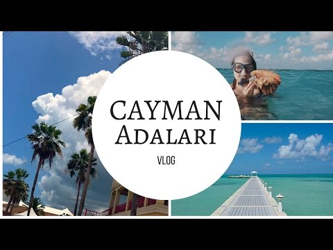CAYMAN ISLANDS (w/ English subtitles) | Vlog #3