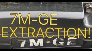 1JZ Supra Swap: 7MGE Extraction