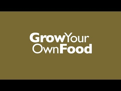 Grow Your Own Food with Sean James Cameron