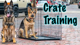 How to Crate Train German Shepherd Puppy.