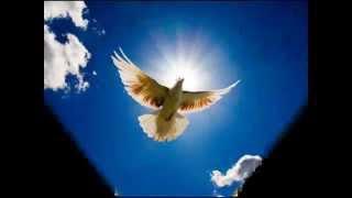 ATMA DEVA DIGI HS 2   www the catholicchurch org