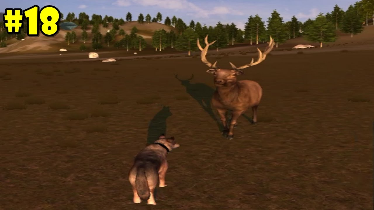 WolfQuest Multiplayer -Pack Life- Android/iOS/Kindle ... - photo#44