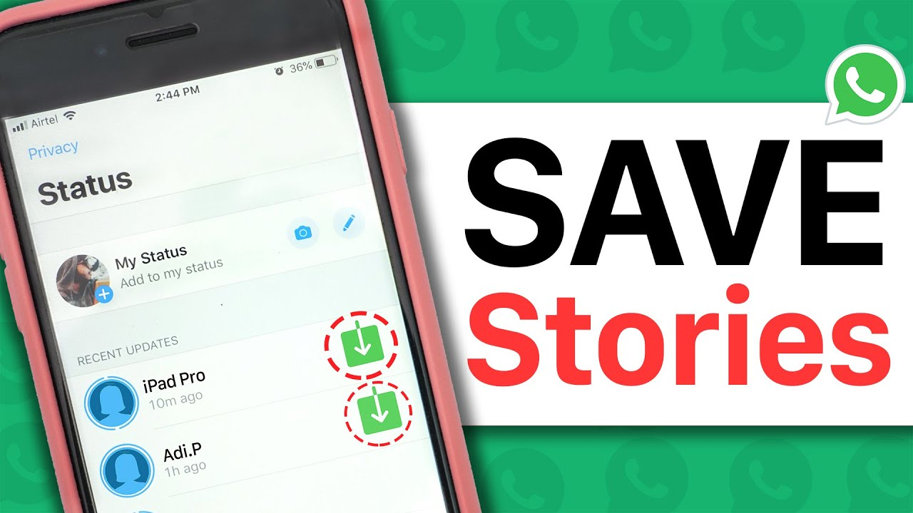 How To Save Whatsapp Status Videos Pictures Gifs To Gallery Whatsapp Tricks