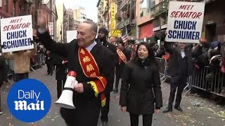 New York celebrates Chinese Lunar New Year of the Pig