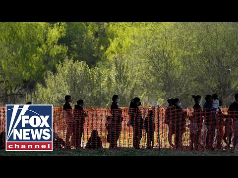 Middle-class migrants reportedly being dropped off at US border