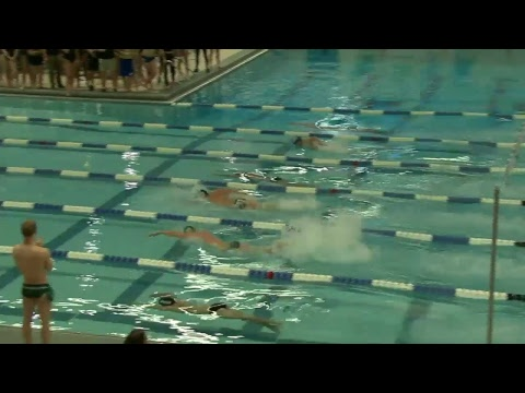 Swimming and Diving vs. Northern Michigan