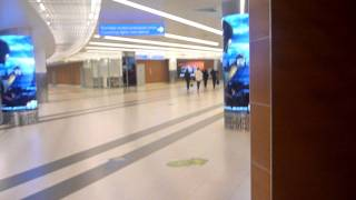 TRAVEL CHANNEL - Imigration at Moscow Airport | Moscow Sheremetyevo International Airport