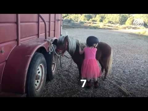 WATCH: This little cowgirl trying to climb on her pony is the cutest thing in the Wild West.