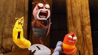 LARVA - ROCKY ROAD | Cartoon Movie | Cartoons For Children | Larva Cartoon | LARVA Official