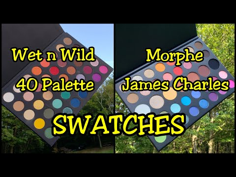 Live: Wet n Wild 40 Palette Compared to Morphe James Charles thumbnail