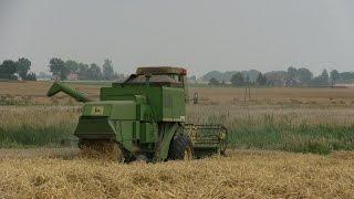 Żniwa 2014 John deere 955 Harvest
