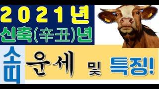 2021 신축년 소띠들의 운세 및 재물복. 삼재가 나간다/사주팔자/뱀띠/닭띠
