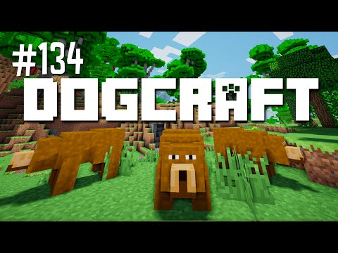 STACY AND THE THREE BEARS - DOGCRAFT (EP.134)