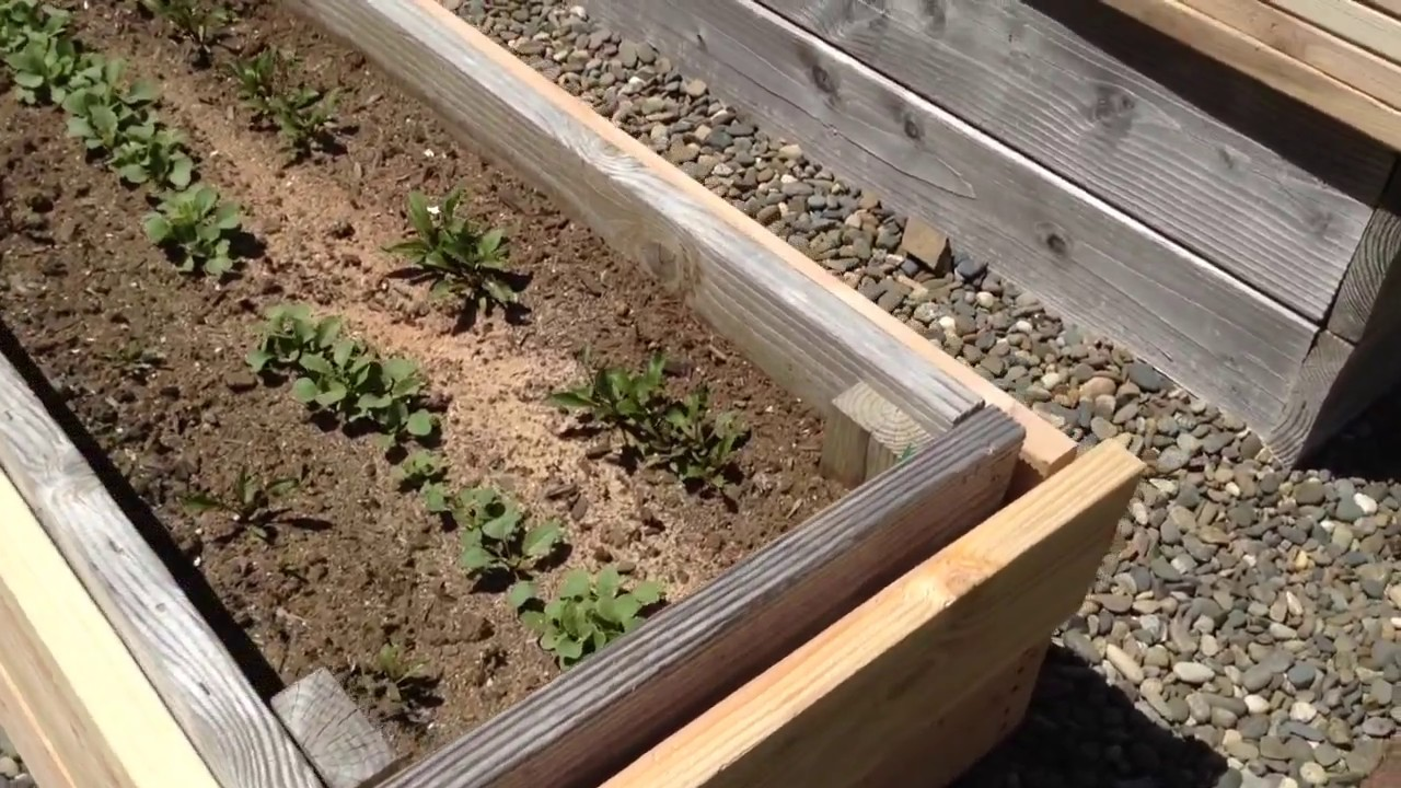 HOW TO FIX/REPAIR ROTTING RAISED GARDEN BED - YouTube